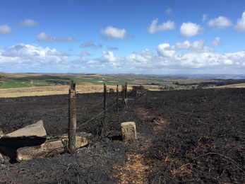The extensive and specialist fencing has been burned at Bartinney Downs Nature Reserve