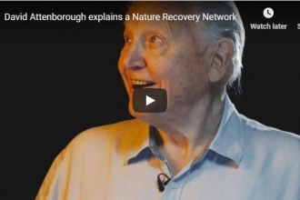 David Attenborough calls for a Nature Recovery Network