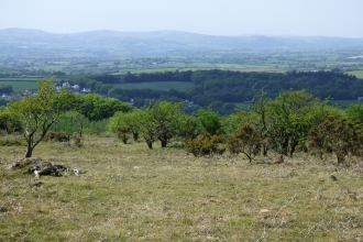 a view out onto the landscape from bodmin moor - cropped green grass in the foreground gives way to lush shrubs and a sea of dark greens and browns beyond before opening out to the patchwork of farmers fields and a hazy grey distant sky