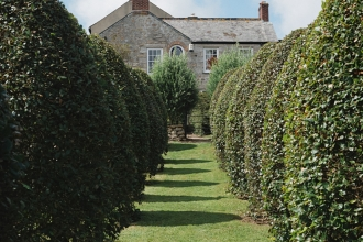 View of the house at Trenarth looking between rows of ornamental trees in the garden