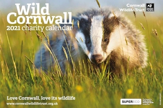 2021 Wild Cornwall Calendar Front Cover