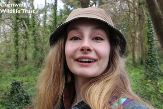 Emily Hardisty explores Pendarves Wood Nature Reserve