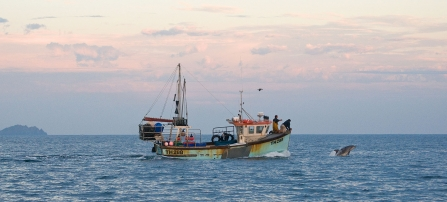 Fishing boat and Bottlenose Dolphin - Adrian Langdon