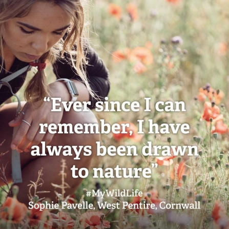 2_ Sophie Pavelle My Wild Life quote 1 by Jack Johns