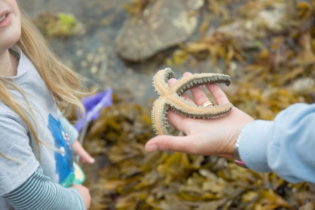Up close to a starfish - photo credit Frugi