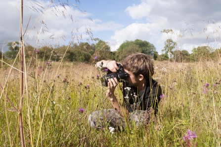 Capturing wild plants and flowers by Katrina Martin