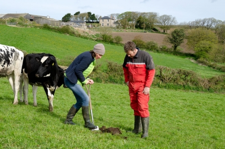Working with farmers Jan Dinsdale Treganhoe