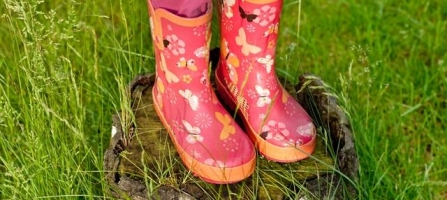 Wear Your Wellies For Wildlife!