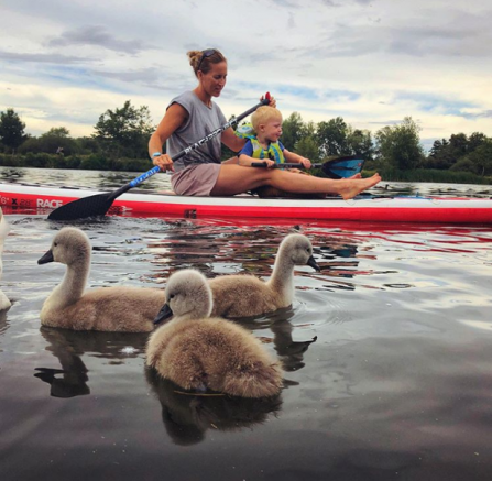 In the foreground, 3 swan cygnets huddle together. Behind, Helen sits on a paddleboard with her son between her legs and cruises down the river