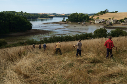 Volunteers and Reserves staff scything at Churchtown Farm
